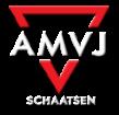 AMVJ Schaatsen